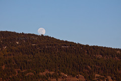 Rising Moon, Setting Sun 20 (LongInt57) Tags: blue trees sunset red sky orange brown moon white mountain canada mountains tree green nature forest glow bc okanagan hill hills moonrise valley glowing moons forests goldenhour