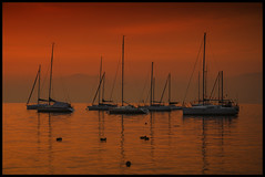 Ordine sparso (robbar74) Tags: sunset red italy yellow nikon italia tramonto lagodigarda thelook veneto bardolino barcaavela heartawards betterthangood d7000 nikonflickraward mygearandme mygearandmepremium ringofexcellence photographyforrecreation beautifulcolorfulworld niceasitgets lacasadinadiavalerio supersixstage1 vigilantphotographersunite robbar74