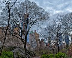 1-Central-Park-Spring-2013-III-D800_Apr132013_0042 (JB Artful Photo) Tags: park city nyc urban newyork centralpark manhattan