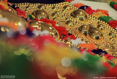 MG_3459 (PRATHAPSTOCKIMAGE) Tags: india elephant festival canon religion decoration kerala trissur pooram nettipattom eos60d