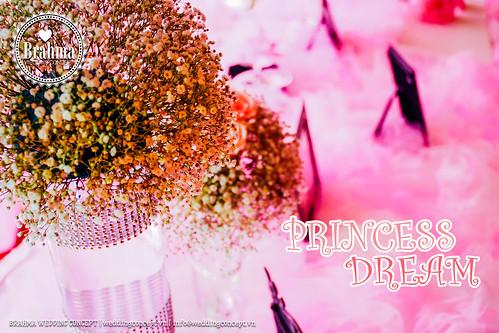 Braham-Wedding-Concept-Portfolio-Princess-Dream-1920x1280-11