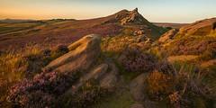 Ramshaw Rocks (JamesPicture) Tags: heather peakdistrict ranmshawrocks sunset