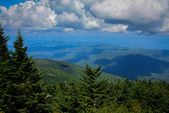 On top of Mt. Mitchell (steviep187) Tags: mtmitchell blueridgeparkway parkway nc northcarolina usa 2016 asheville mountain trees green white black orange sunny outside outdoors people landscapes scenery cars summer season canon eos xsi rebel dslr digital fun beautiful forrest clouds blue yellow bee butterfly outdoor rock rocks sun bright shadows warm cool pretty landscape