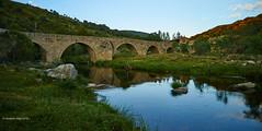 Bridge of the river Tormes (I)/Puente sobre el rio tormes (I) (Modesto Vega) Tags: bridge arch reflection river rivertormes puente arco rio riotormes navacepedadetormes sierradegredos piorno adenocarpushispanicus