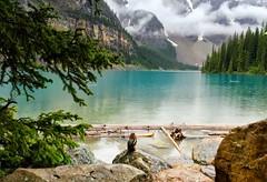 Moraine Lake (RJ Thomas Photography) Tags: morainelake banff park chipmunk