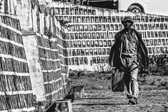 In movimento. (danielegraticola1) Tags: madagascar stanchezza sudore complicato reportage photoreportage speranza