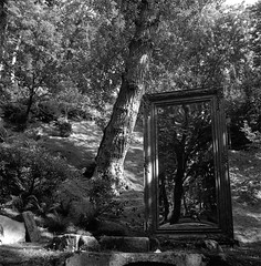Reflexion (Imanol 6x6) Tags: trix 400 kodak 120 6x6 500x500 film bw blackandwhite mediumformat mf nophotoshop rolleiflex trl f28 sansebastian donostia eh street landscape reflexion