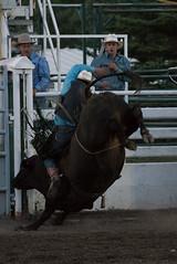 Tak_CPRA_2016-5244 (takahashi.blair) Tags: coachtak rodeo blairtakahashitakahashiblaircoachtakblairtakahashi pincher creek barrel racing bronc rope bareback steer bullriding