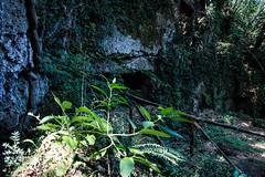 DSC_2273 (docmaso) Tags: viafrancigena bike rocks nature