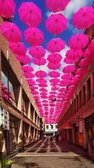 Umbrella in Lund (AndreasNikon) Tags: ngc samsung umbrella sky lund art pink blue street