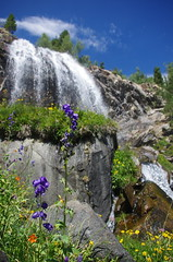 Lower Lundy Canyon Falls (stevendudes000) Tags: flowers waterfalls canyons highsierras california hiking inyo nationforest