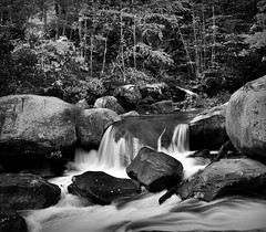 Green River Narrows (GR167) Tags: october fall bwlandscape nc silverefex