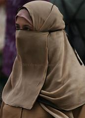 brown half niqab (niqabi_travel) Tags: niqab veil muslim lady women islam