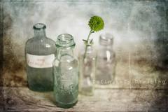 Old Bottles {Textured} (DefinitelyDreaming) Tags: vintage vintagebottles stilllife vintagelens flower helios442 helios texture 2lilowls sonya99