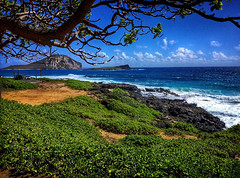 Makapuu Beach (jcc55883) Tags: hawaii oahu makapuu makapuubeach wainmanalo ocean pacificocean rabbitisland shoreline kalanianaolehighway nikon nikond3200 d3200