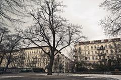 LSD-Kiez, Berlin – Prenzlauer Berg (Lychener Straße/ Schliemmannstraße/ Duncker Straße) (William Veder) Tags: berlin lsd 2013 tittengitti