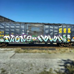 Drone * Molok (Makes No Sense!) Tags: railroad bridge canada art car train truck painting snowboarding graffiti fan paint flat steel painted graf moloko stock bridges rail railway grand trains tags spray crew enjoy end trunk trucks spraypaint boxcar panels rollers graff gt piece bombs gs hopper peices railfan freight rolling bombing molok boxcars erase reefer dro flatpanel ends wholecars freighttrain freights autorack rollingstock drone reefers mns autoracks benched benching mlok droneone molk droner myrage endtoends january2013 february2013