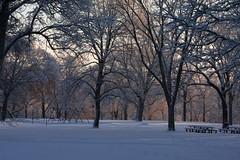 winter park (jimmy_racoon) Tags: park winter snow nature minnesota playground landscape is 70200 f4l 70200f4lis canonxsi snowscapr