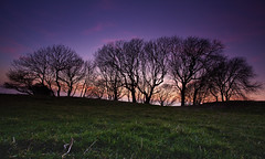 Remember the checklist! (JamboEastbourne) Tags: park trees sunset england silhouette downs sussex south east national butts eastbourne brow