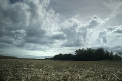 En route (ChiaraPhotos) Tags: travel cloud green car rain alberi landscape photography nikon nuvole mais photograph fotografia pioggia grano temporale nikonphoto