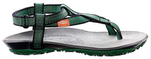 Lizard Chattanooga Shoe Company Dansko Vionic Fly London