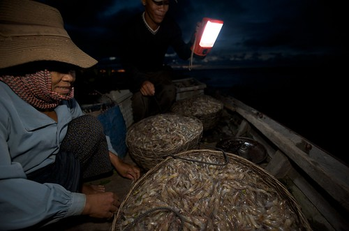 Shrimp trading  in Tonle Sap, Cambodia. Photo by Patrick Dugan, 2008.