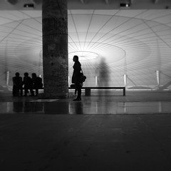 Show me the other side of the world (Arianna_M) Tags: venice architecture visions biennale venezia insieme architettura 2012 commongrounds visioni parallelworlds wecouldtakethesestonesbuildsomething showmeeverything outofmessoutofmytents wecouldtryforever totryandsee wesurvivealone