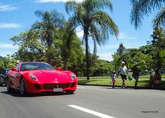 HGTE Wannabe (ThiagoLP_700) Tags: red brazil sport ferrari exotic gt rosso coupe supercar wannabe exotics gtb granturismo v12 berlinetta 599 ferrariday ferrari599gtb hgte thiagolp700 hgtewannabe