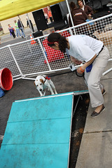 IMG_5801 (Rich Terrell) Tags: dogjog 2013 richmondspca