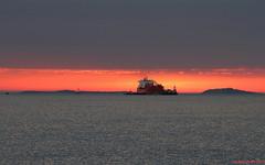 IMG_Tanker Bow Sirius offloading in Boston Harbor. (Steve-Boston) Tags: boston massachusetts ships tankers castleisland bostonharbor bowsirius