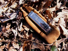 Trail Toy... Hohner Blues Harp Harmonica - Key of C (Frank Masterman) Tags: park trees nature illinois blues hike trail harp naturepreserve harmonica s700 hohner bluesharp ogle rockrivervalley