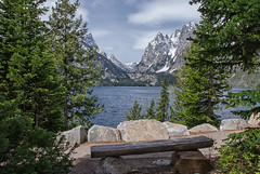 Sense of Renewal (dbushue) Tags: lake mountains nature bench landscape nikon view seat vista wyoming renewal 2012 grandtetonnationalpark jennylake coth gtnp supershot absolutelystunningscapes damniwishidtakenthat coth5 sunrays5 dailynaturetnc13