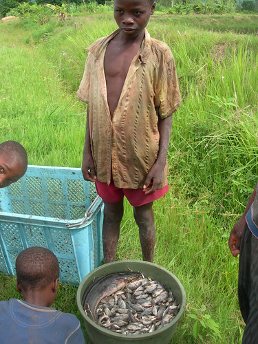 A boy admiring a catch from a pond, Chingale, Zomba, Malawi. Photo by Asafu Chijere, 2010.