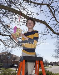2013:365:112 (Lisa-S) Tags: ontario canada tree lisas birdhouse hanging ladder 365 owen brampton earthday day112 6037 day112365 3652013 365the2013edition copyright2013lisastokes 22apr13
