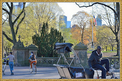 CP-4-21-13-2_0511FL (davidben33) Tags: cp centralpark newyork manhattan people spring landscapes trees blossom children dogs faces portraits ballet dancer usa brooklyn nature architecture street streetphotography parks landscape cityscape buildings women beauty fashion live libraries museums