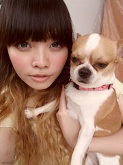 Me and Mr. Hero, the Chihuahua (treasurebelle) Tags: chihuahua me hair ombre indonesian deedee gyaru selca ombrehair treasurebelle piccolettabelle