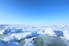 other drift ice view. (cate) Tags: japan hokkaido ngc freezing bluesky driftice theseaofokhotsk amourriver