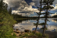 STORM CLOUDS GATHERING (MERLIN08, 2MViews) Tags: usa colorado mtevans echolake forest landscape lake water cloudssky outdoors