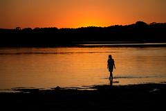 Strolling at Sunset (fehlfarben_bine) Tags: sunset silhouettes afterglow orange lake beach girl water nikond800 70020000mmf40 walking berlin seascape
