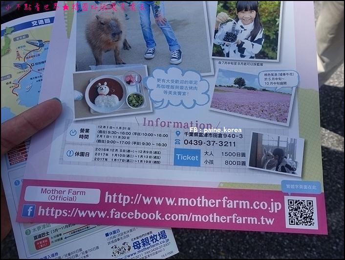 木更津母親牧場 (5).JPG