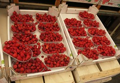 Sunday Colours - Wild Strawberries in the Palermo Market (Pushapoze) Tags: italia italy sicilia mercato palermo fragolinidibosco fraisesdesbois wildstrawberries fragi