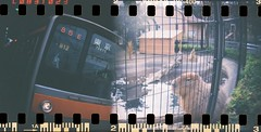 (Yukijiro.) Tags:  135film jr kodakultramax400 multipleexposure perforation sprocketrocket