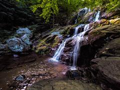 Dark Hollow Falls (Ed Rosack) Tags: rock creek landscape waterfall river forest water shenandoahnationalpark edrosack virginia usa tree mountain