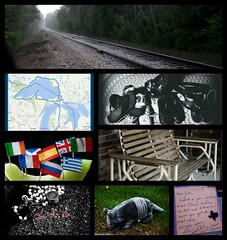 August 2016 Photo Challenge (Jules (Instagram = @photo_vamp)) Tags: collage photochallenge