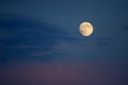 August Sturgeon Moon _9436