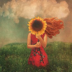 (Erika C. Brothers) Tags: painterly texture landscape sunflower