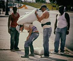 Work-loaded (Robyn Hooz) Tags: work worker load carico pesante heavvy sacchi sack fatica stress havana cuba