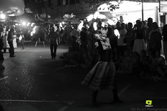 Corso-Fleuri-Selestat-2016-71.jpg (valdu67photographie) Tags: alsace corsofleuri selestat 2016 nuit international basrhin expositions fanabriques fanabriques2016 lego rosheim visite