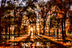 Sun and Shadows (Gary.Lamprecht) Tags: mississippiriver backwater canont6s camping shadows sunset