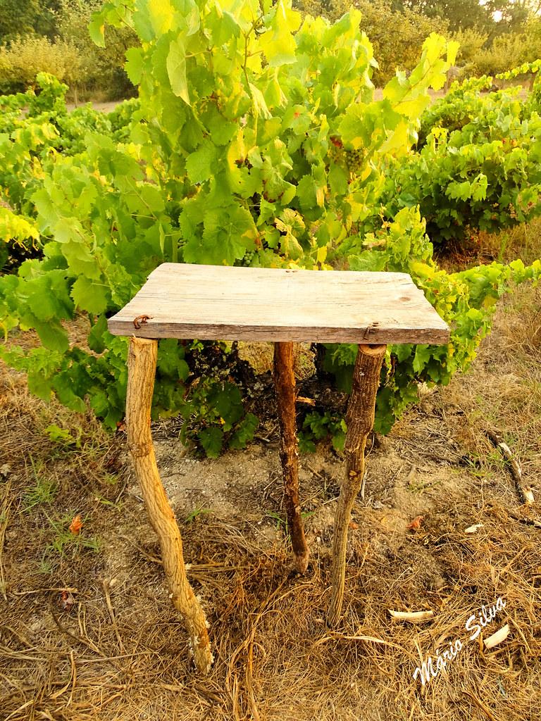 Águas Frias (Chaves) - ... no campo ... uma mesa portuguesa ... com certeza ...